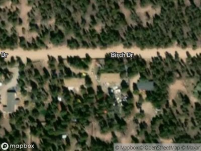 Birch-dr-Leadville-CO-80461