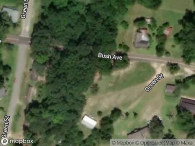 Bush-ave-Chauncey-GA-31011