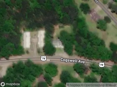 Cogswell-ave-Pell-city-AL-35125