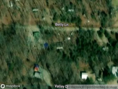 Betty-ln-French-village-MO-63036