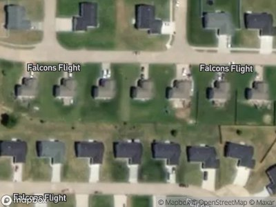 Falcons-flight-Wright-city-MO-63390